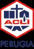 Logo sito Acli verticale